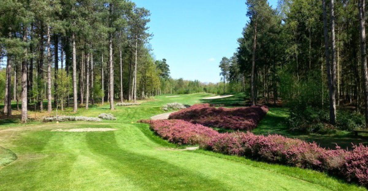 16++ Champ de bataille golf club ideas in 2021